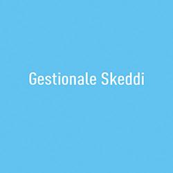 1-box_skeddi