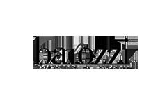 logo-barozzi-1